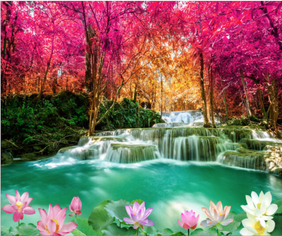 Image of a pond with a forest of red leaved trees with some flowers in the front and a stream with multiple little waterfalls into the pond.