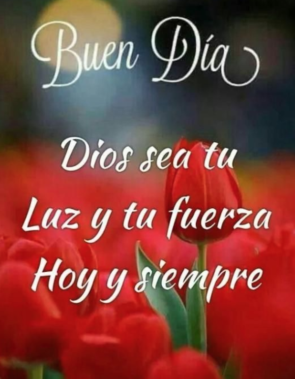 Buen Dia Dios sea tu Luz y tu fuerza Hoy y siempre