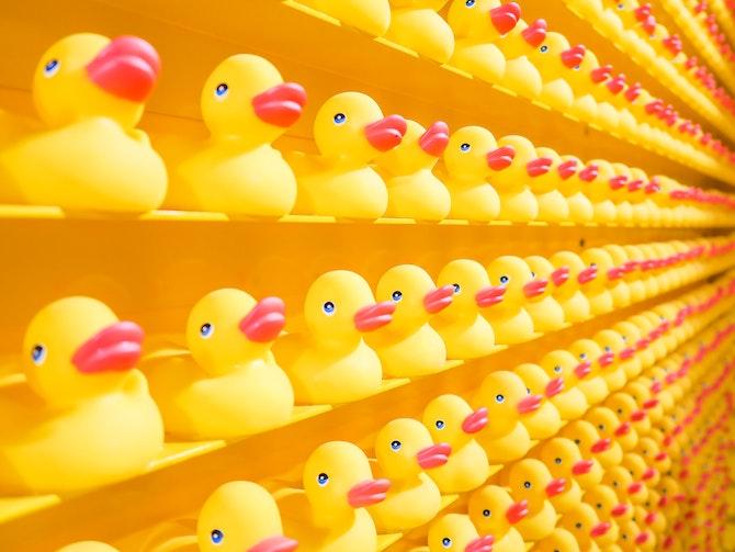 Bathtub ducks on shelfs